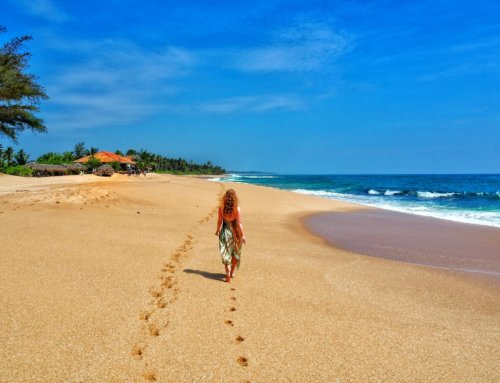 Two weeks in Sri Lanka: a dream trip. Part 2: Mirissa, Tangalle and Nilaveli beaches