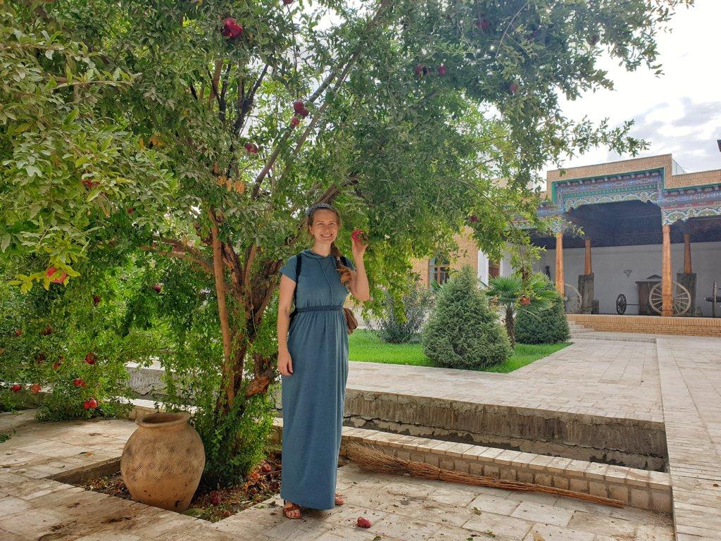 Pomegranates in Fergana